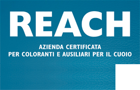 certification Reach